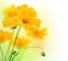 стихи о весне сочиненные детьми